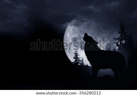 Howling Wolf Dark Background. Full Moon and the Wilderness. - stock photo