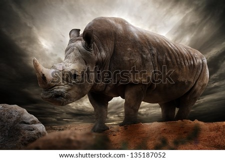 Huge rhinoceros against stormy sky - stock photo