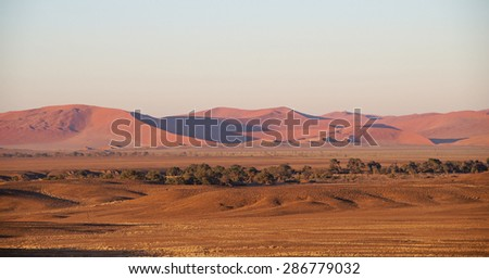 Huge sand dunes seen in Sossusvlei Park in Namibia early in the morning - stock photo