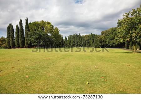 Huge yellowed field in a luxurious Italian park-garden Sigurta - stock photo