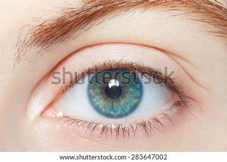 Human, blue healthy eye macro - stock photo