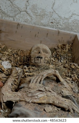 Human body in cemetery-cellar under church - stock photo