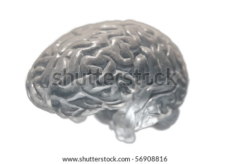 Human brain covered with dust