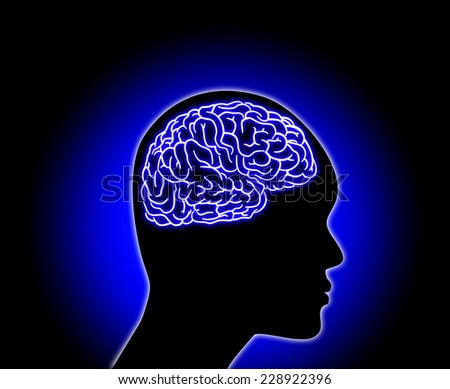 Human Brain - Illustration on color background - stock photo