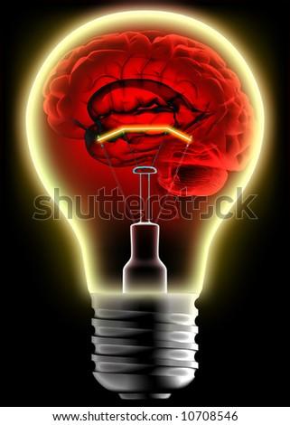 Human brain in the lightbulb - stock photo