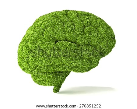 human brain is covered with green grass. The metaphor of the wild, natural or imperfect intelligence - stock photo