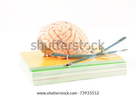human brain on the book with glasses - stock photo