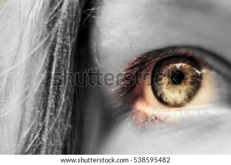 human brown eye macro