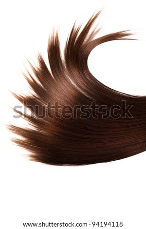 human brown hair on white isolated background