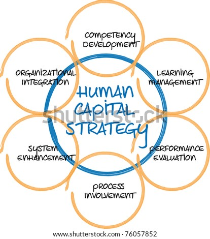 Human capital business diagram management strategy whiteboard sketch  illustration - stock photo