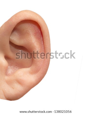 human ear on white background - stock photo