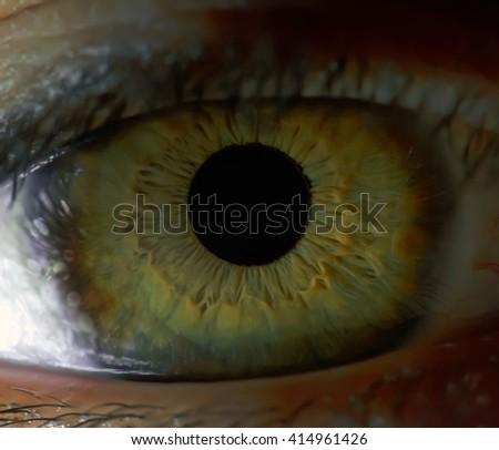 human eye close up - stock photo