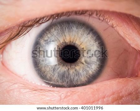 Human eye detail - stock photo