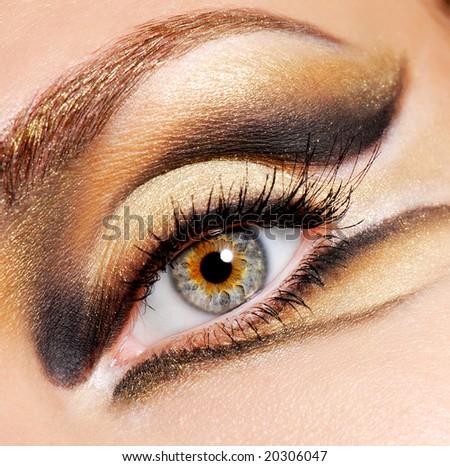 Human eye of woman with modern and stylish colored eye make-up - stock photo