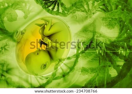 Human fetus - stock photo