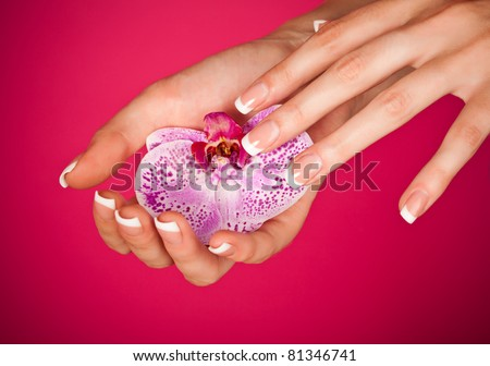 Human fingers with classic french-style manicure touching orchid over pink background - stock photo