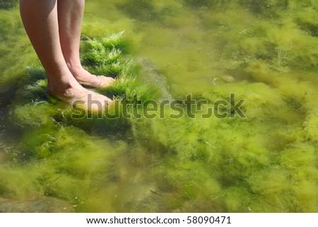 Human foot in the seaweed sea - stock photo