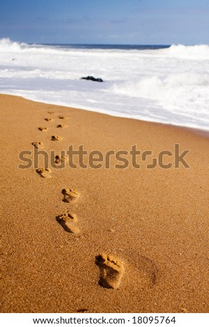 Human footprints leading away from the viewer into the water