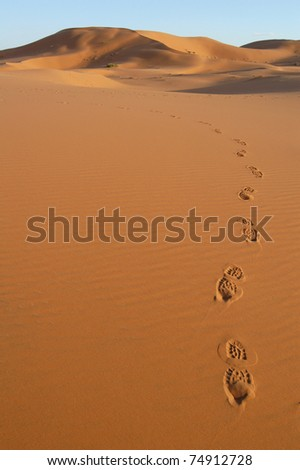 Human footsteps in the sand dunes of Erg Chebbi in the Sahara Desert, Morocco. - stock photo