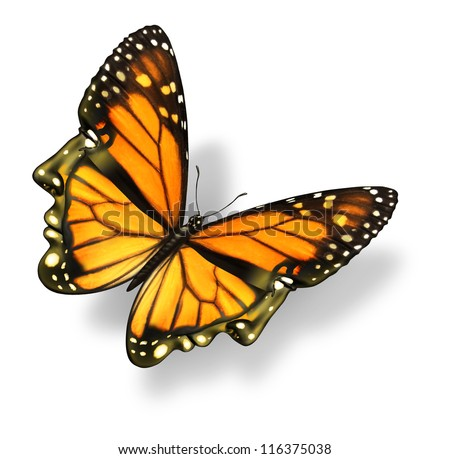 Human freedom and free your mind medical health care concept with a monarch butterfly insect in the shape of a human head and face flying in the air as an opportunity for life and success.