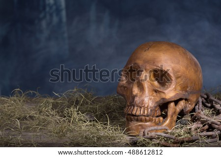 Human halloween skull on a smoky background
