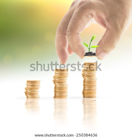 Human hand adding a golden coin with young plant in the final row over blurred nature background. Money coin concept. - stock photo