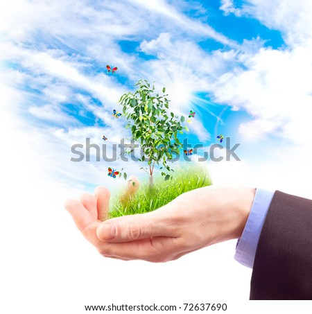 Human hand and multicolored butterflies, grass and plant on sky background. Collage.