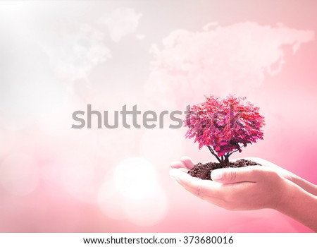 Human hand hold red heart of big tree on blur world map of clouds background. Organ Donation Diabetes Day Marriage Healthy World Trust Life Cancer Idea Autism Awareness CSR Cure Blood Breast Concept. - stock photo