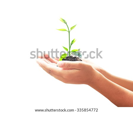 Human hand holding young plant with soil isolated on white background. Health Care, Insurance, Investment, World Environment concept. - stock photo