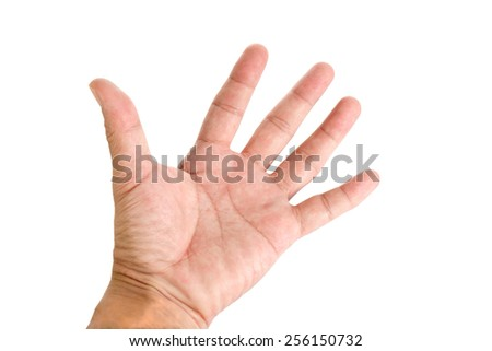Human hand showing the five fingers on white background.