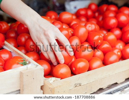 human hand takes a tomato from the counter market - stock photo