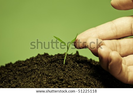 Human hand touching a young plant. Unity with nature; harmony concept - stock photo