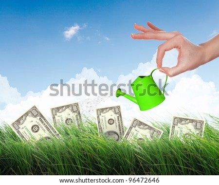 Human hand with a pot watering growing money tree - stock photo