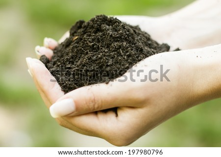 Human hands holding a handful of soil.