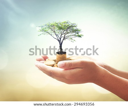 Human hands holding golden coins with big tree over blurred abstract beautiful city, sea, ocean, forest, desert over colorful sunset background. Development Plan Investment Money ROI LIT Fund concept. - stock photo