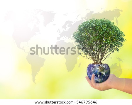 Human hands holding perfect growing tree plant on the world with soil on blurred natural background of tree leaves flower with world map. world photo from NASA : Reforestation, environment eco - stock photo