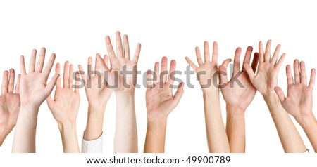 human hands isolated