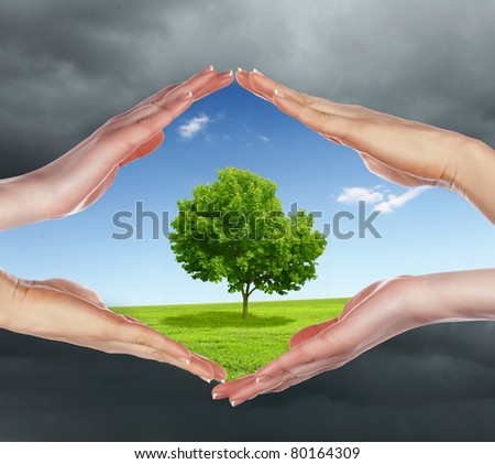 human hands protecting tree from darkness and pollution - stock photo