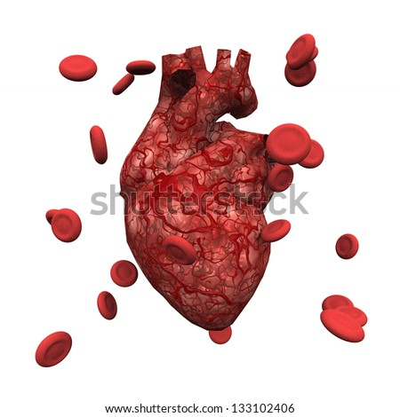 Human Heart and Blood Cells - stock photo