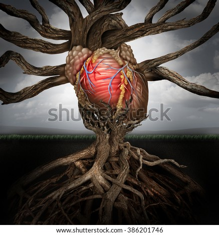 Human heart health concept as a symbol for growing a body organ and the veins and arteries of the circulatory system as a body part shaped as tree roots and branches as a medical metaphor for life. - stock photo