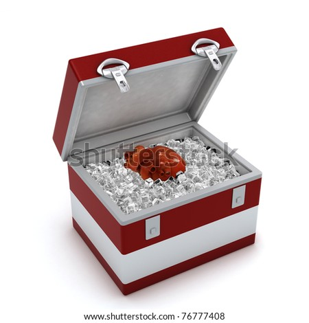 Human heart in ice box isolated on white background - stock photo