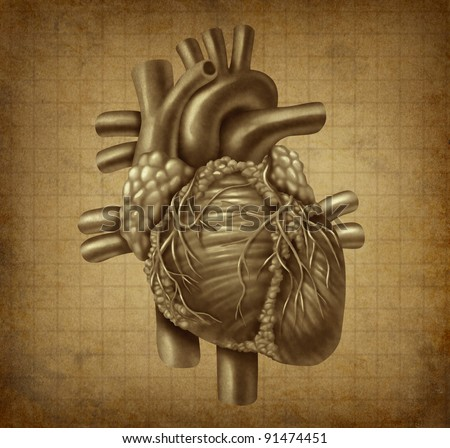 Human heart in old vintage grunge parchment texture as a medical symbol of the blood pumping cardiac inner organ as a health and medicine concept for cardiovascular treatment of diagnosis. - stock photo