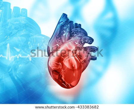 Human heart on abstract background - stock photo