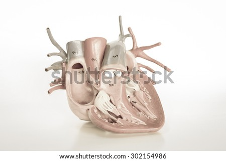 human heart with vintage style  - stock photo