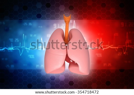 Human lungs and trachea. 3d render - stock photo