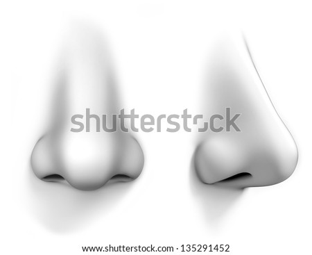 human nose isolated on white background