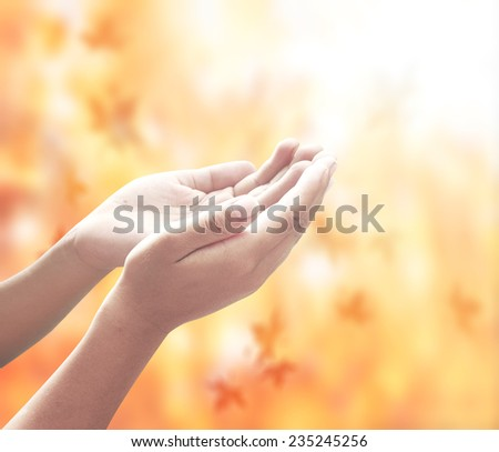Human open empty hands with palms up, over blurred golden autumn sunset background. Pray for support Business, Environment Day Baptism of the Jesus World Mental Health thanksgiving Candlemas concept.