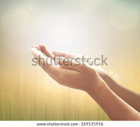 Human open empty hands with palms up over blurred sunset background. Forgiveness, Repentance, Surrender, Trust, Muslim, Islamic, Health Care, God, World Environment Day concept.