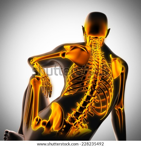 human radiography scan  with glowing bones - stock photo