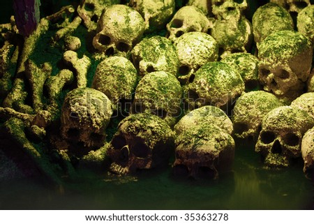 Human sculls, bones and skeletons in green mist - stock photo